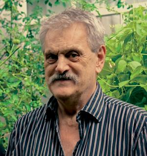 Dirk Streitenfeld